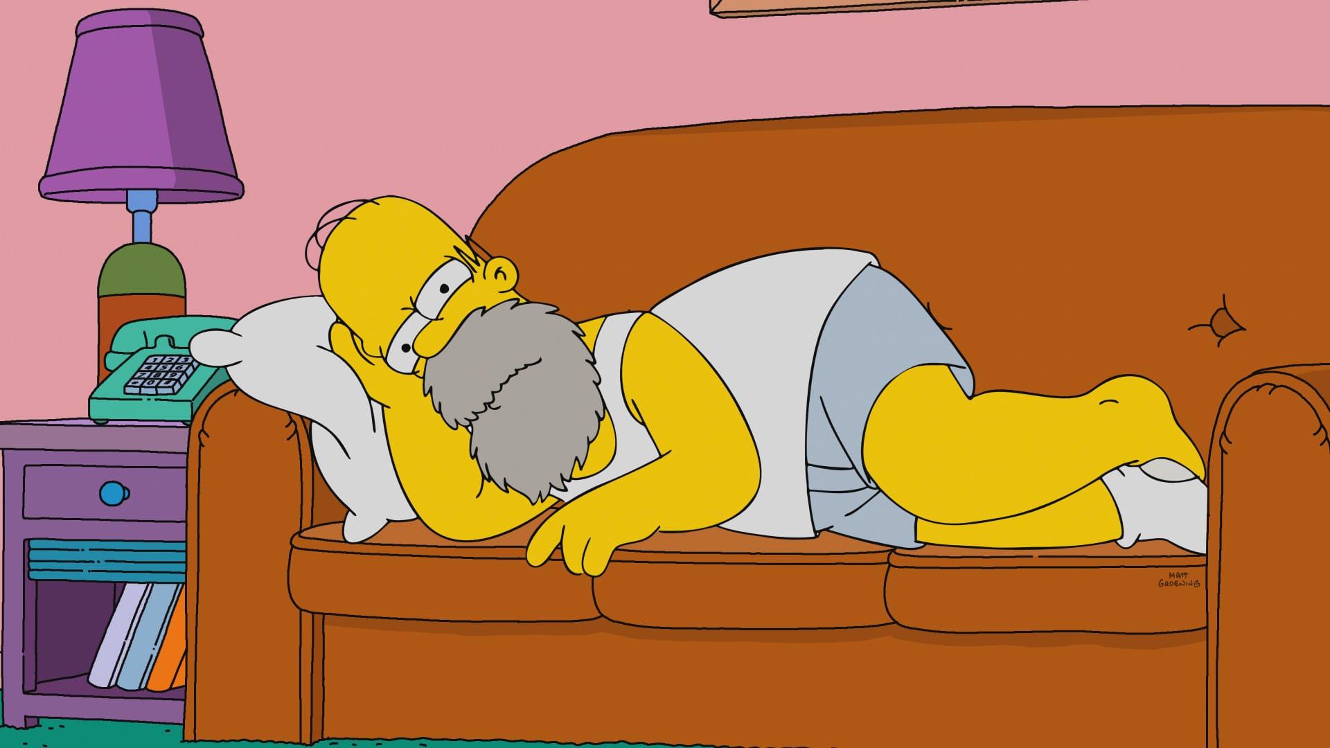 Les Simpson - Autonhomer