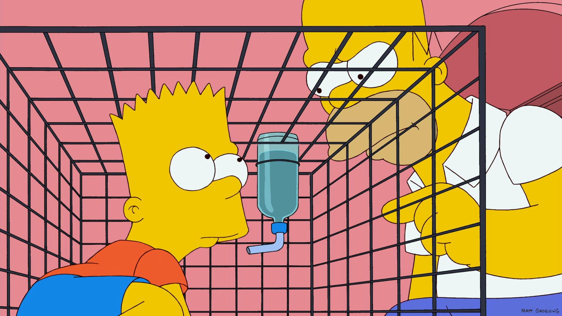 Les Simpson - Bart pose un lapin