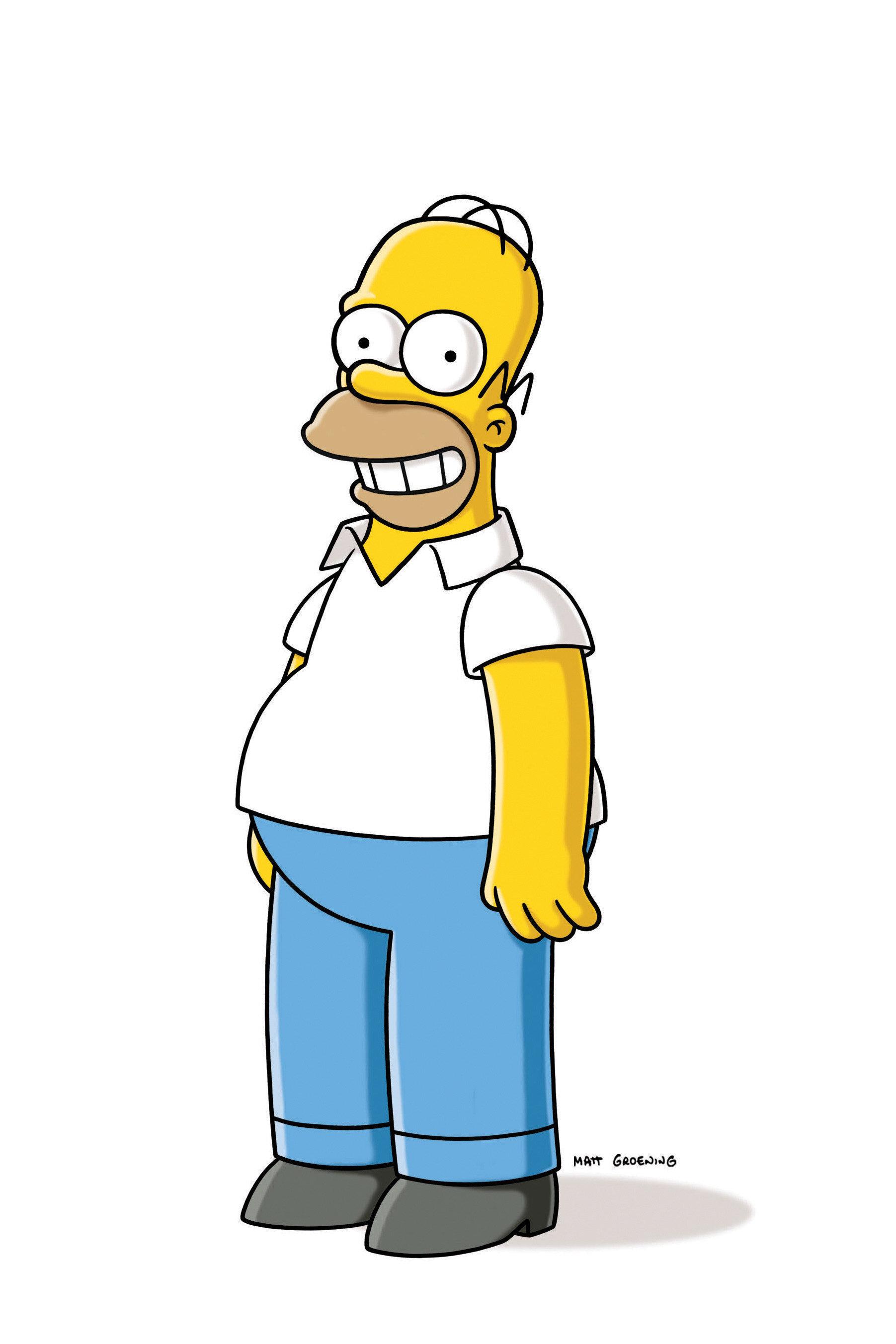 Les Simpson - Homerland