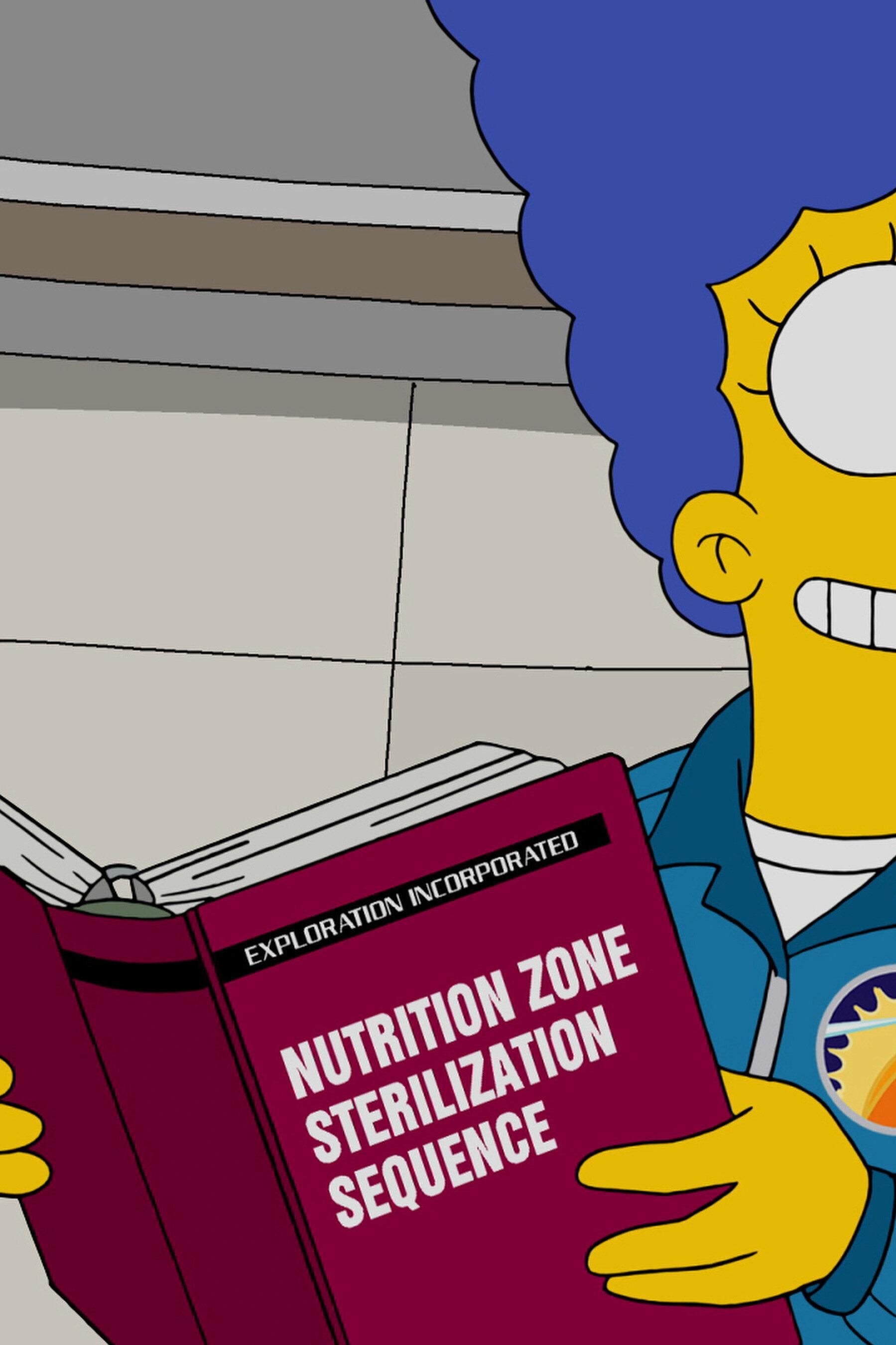 Les Simpson - 22 pour 30